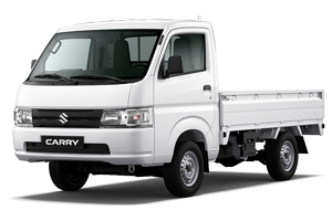 carry-truck